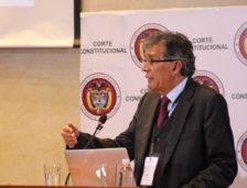 Exposición de Camilo González en la Audiencia en la Corte Constitucional