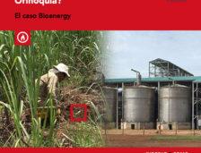 """¿Amnistía a la """"concentración productiva"""" del siglo XXI en la Orinoquía? El caso Bioenergy"""