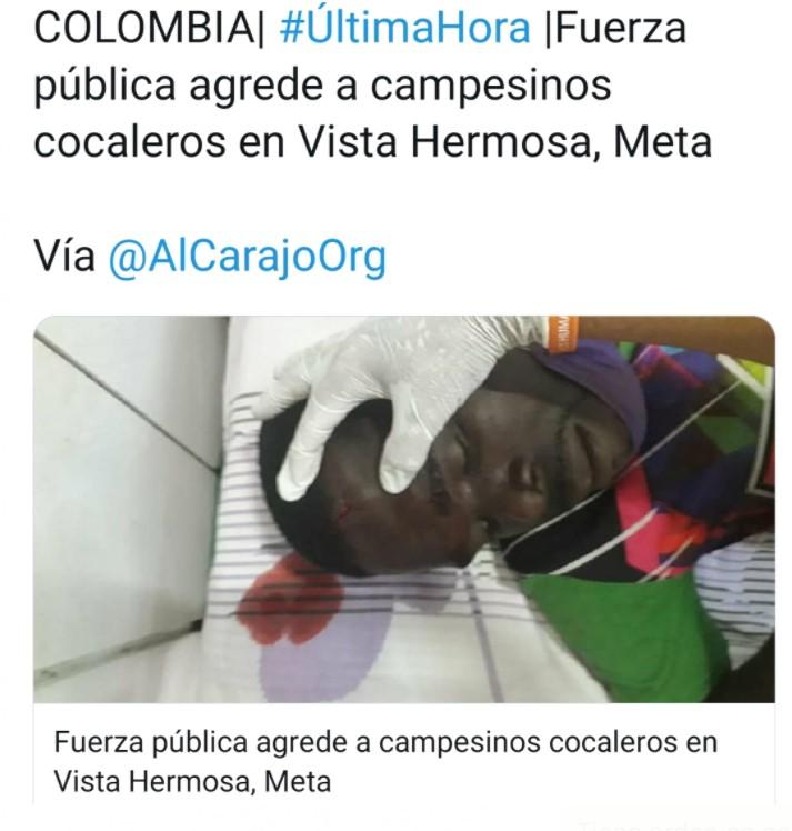SIGUE LA VIOLENCIA DE LAS BRIGADAS MILITARES DE ERRADICACIÓN FORZADA
